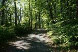 B Greenwood Road - Photo 4