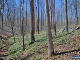 TBD Buck Creek Lane - Photo 12