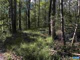 Wilderness Ln Lane - Photo 4