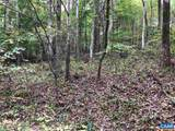 Wilderness Ln Lane - Photo 6