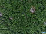 226 Hooded Warbler Lane - Photo 13