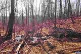 226 Hooded Warbler Lane - Photo 4