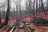 226 Hooded Warbler Lane - Photo 6