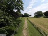 16743 Wesley Chapel Road - Photo 5