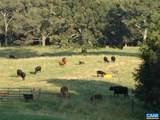 3392 Edgemont Farm - Photo 45