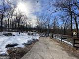 264 Mt Vista Trail - Photo 2