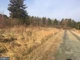 Piney Neck Road - Photo 1