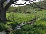 114 Ginseng Springs Lane - Photo 11