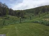 114 Ginseng Springs Lane - Photo 5