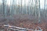 Lot 37 Spring Mountain Property - Photo 1