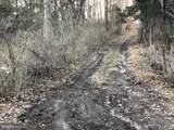 Turkeyfoot Road - Photo 6