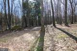 287 Meadow Mountain Trail - Photo 8