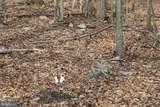 801 Pheasant - Photo 7