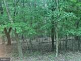 Driftwood Egret - Photo 1