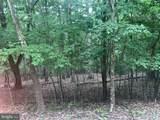 Driftwood Egret - Photo 2