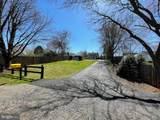 7401 Filly Lane - Photo 9