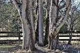 18332 Shiloh Church Road - Photo 46