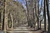 18332 Shiloh Church Road - Photo 5
