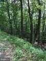 Lot 6 & 11 Trough Creek Acres - Photo 12