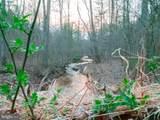 Tub Run Hollow - Photo 3