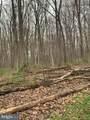 Pump Run Trail - Photo 14