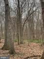 Pump Run Trail - Photo 15