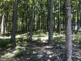 Lot 49 Fork Run Trail - Photo 27