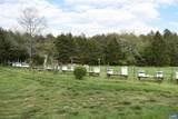 2988 Hickeys Road - Photo 13