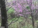 Allensville - Photo 12