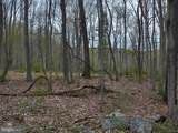 1.10 Acre Old Woodstock Rd - Photo 6