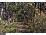 00 Lower Mountain Road - Photo 12