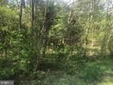 5603 Dogwood Tree Lane - Photo 2