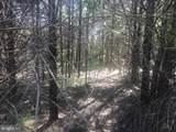 5603 Dogwood Tree Lane - Photo 3