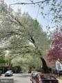 4516 Osage Avenue - Photo 37
