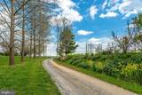 19525 Telegraph Springs Road - Photo 56