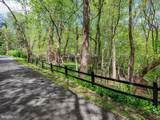 10223 Cedar Pond Drive - Photo 6