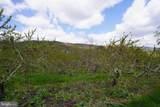 8838 Apple Harvest Drive - Photo 5