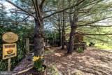 1420 Royal Oak Drive - Photo 56