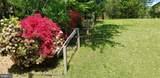 13323 Nickleson Drive - Photo 5
