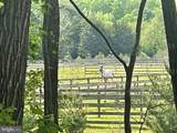 76 White Horse Drive - Photo 65