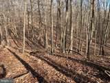 White Oak Pass - Photo 35