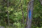 14119 Maple Ridge Road - Photo 14
