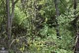 14109 Maple Ridge Road - Photo 10