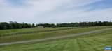 Shenandoah Crossing Dr Drive - Photo 23