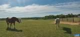 Shenandoah Crossing Dr Drive - Photo 24