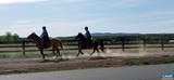 Shenandoah Crossing Dr Drive - Photo 27