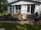 37184 Appaloosa Drive - Photo 7