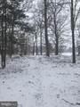 201 Pine Forest Farm Lane - Photo 130