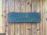 201 Pine Forest Farm Lane - Photo 137