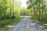 104 Puma Trail - Photo 5
